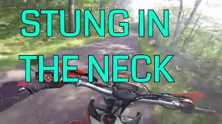 I Was Stung in the Neck While Riding my Dirt Bike