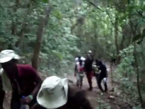 University of Ghana Students' Trip To Mountain Afadjato & Wli Waterfalls.