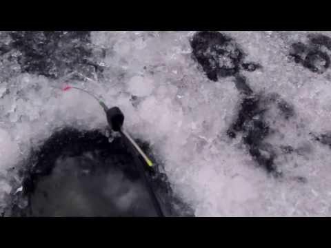 Wędkarstwo Podlodowe-Płocie Na Spławik I Okonie Na Mormyszkę (Bałałajkę)