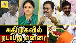 ADMK after Jayalalitha's death | OPS, EPS, Sasikala