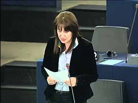Filiz Hakaeva Hyusmenova on Implementation of the...