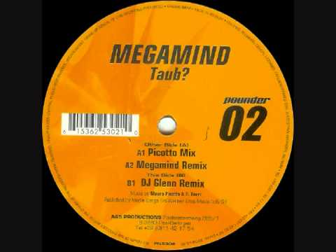 Megamind - Taub (Picotto Mix)