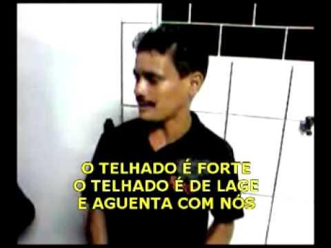 GATINHO ANGORA LEGENDADO