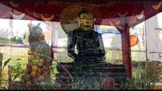 20.000 Người Mỹ, Việt Dự Lễ Cung Nghinh - Phật Ngọc Hòa Bình Thế Giới