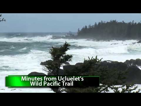 Wild Winter Storm Watching Rates at Anchors Inn, Ucluelet's Pet Friendly Cabins!
