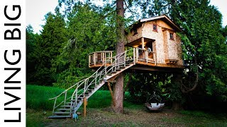 Life In The Trees With The Treehouse Masters