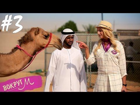 Леся и эмиратские шейхи - ВокругМ. #3 Дубай