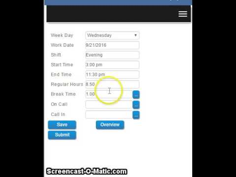 DFS-Sphere Time & Attendance Software for Mobile Devices