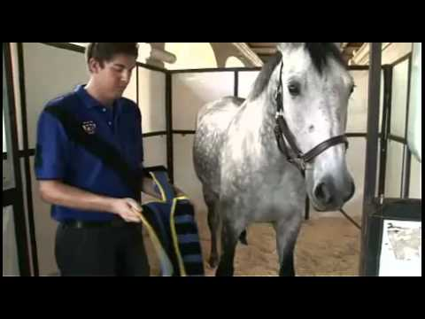 Operations Manual Centurion Boreas Ice Compression Equine Therapy from Magna Wave Products