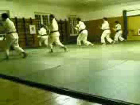 Shorinji Kempo Image 1