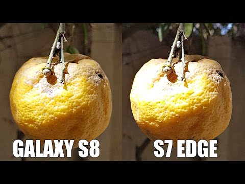 Samsung Galaxy S8 Plus Vs S7 Edge - Camera Test! (4K)