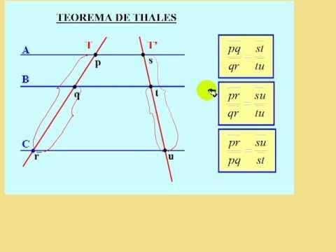 Teorema de Thales, teoría y ejercicio resuelto