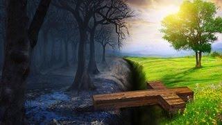 Existe Vida Antes da Morte?