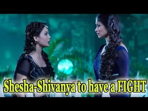 Shesha-Shivanya to have a FIGHT thumbnail
