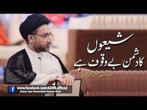 Shio ka Dushman Bewaquf hen by Allama Syed Shahenshah Hussain Naqvi