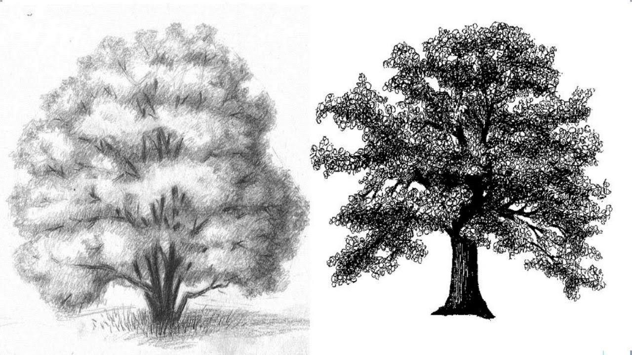 как научиться рисовать пейзажи карандашом: