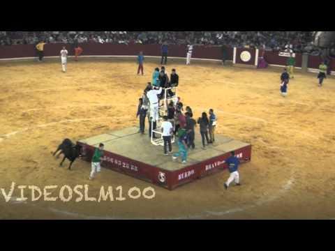 Results for: Videos De Toros Cojiendo Vacas