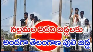 MP Revanth Reddy Protest Against Uranium Mining @Nallamala | MAHAA NEWS