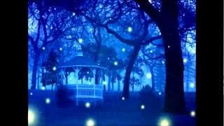 Asleep With The Fireflies