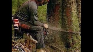 Coldcut - Timber