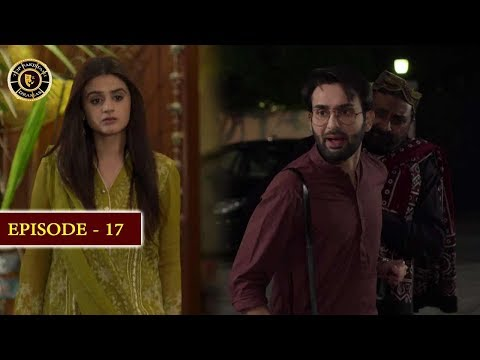 Do Bol Episode 17 | Top Pakistani Drama
