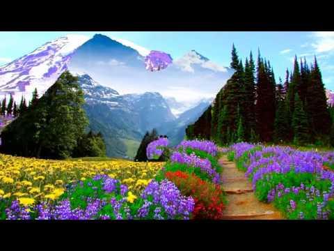 Springtime on the mountains (HD1080p)