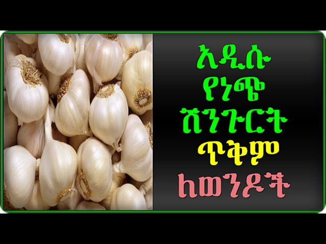Health Benefits Of Garlic For Men