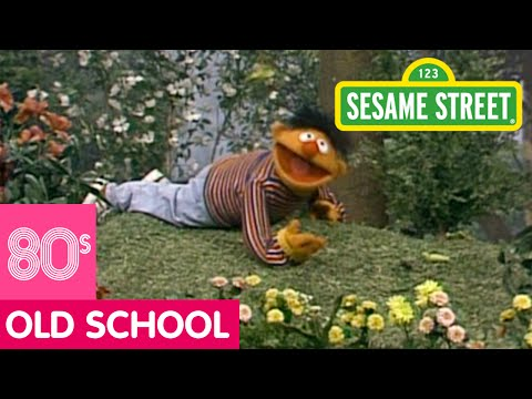 Sesame Street - The Insects In Your Neighbourhood