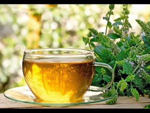 7 Types of Herbs Tea and Their Health Benefits