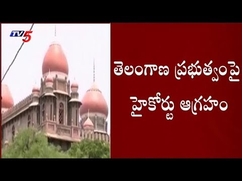 High Court Serious On Telangana Government | TV5 News