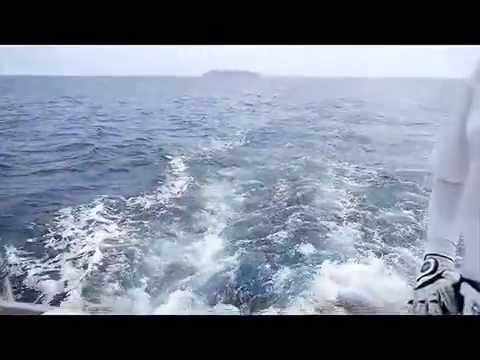 phuket fishing charter sommai fishing-sailfish