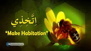 Video: In Quran 16:68, the female Honey Bee does the work - Quran Miracle