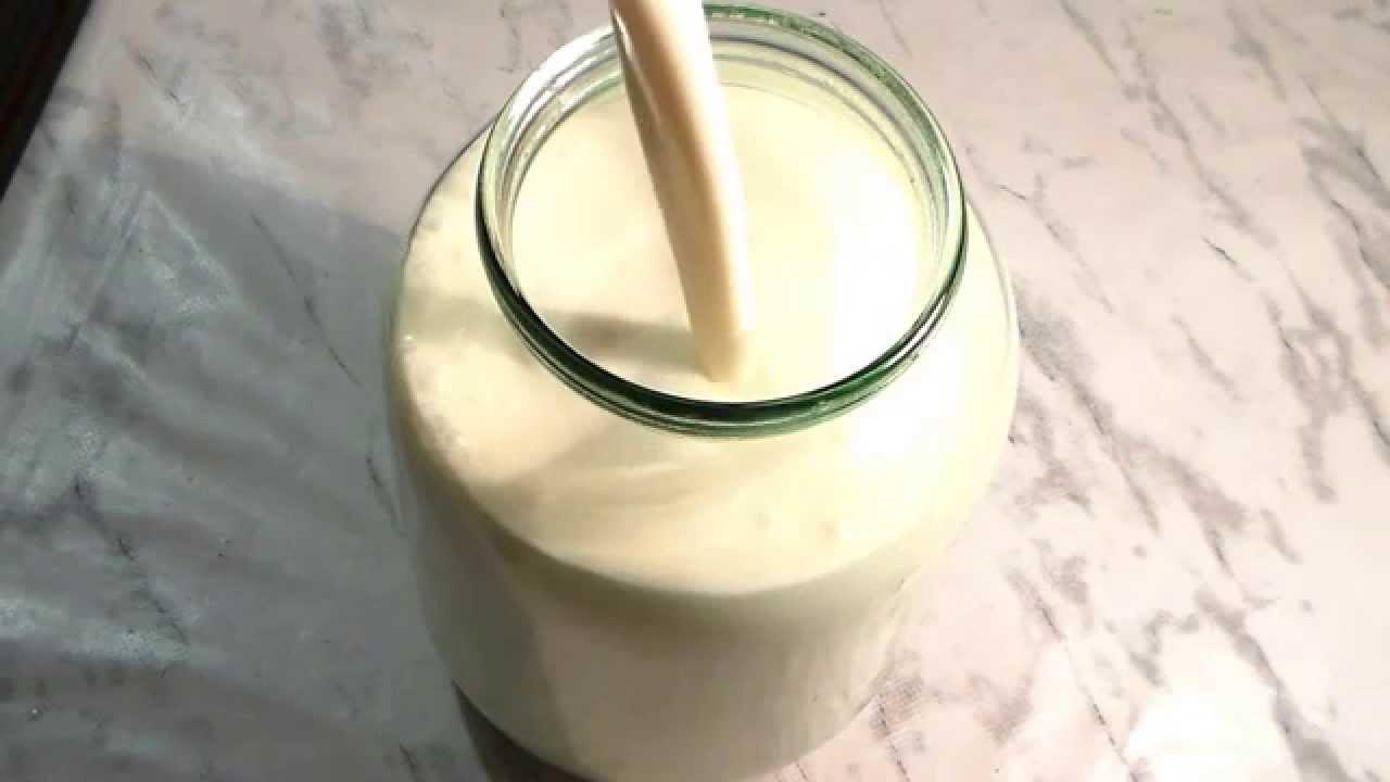 Как сделать домашнюю сметану из домашнего молока
