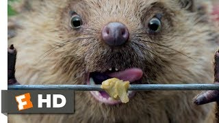 Peter Rabbit (2018) - Electric Fence Scene (6/10) | Movieclips
