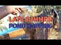Late Summer Pond Hopping Bass Fishing - Rocklin, CA