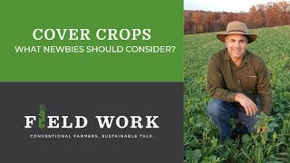 Cover Crops Part 1: What Newbies Should Consider