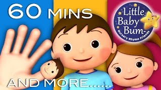 Finger Family | Plus Lots More Nursery Rhymes! | 60 Minutes Compilation from LittleBabyBum!