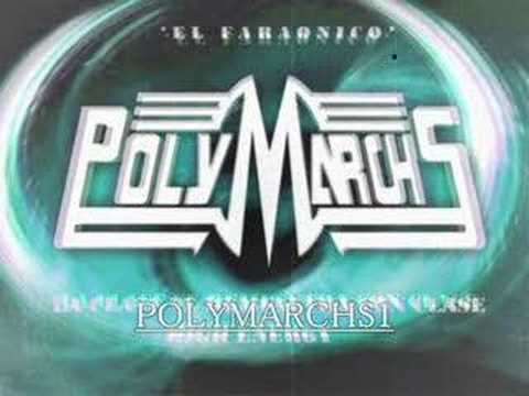 POLYMARCHS DISCO DE ORO Music Videos