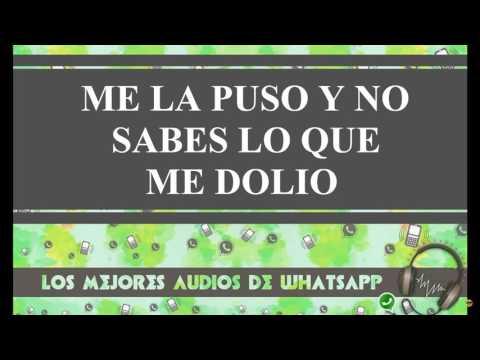 ME LA PUSO Y NO SABES LO QUE ME DOLIO - Los mejores audios de whatsapp thumbnail