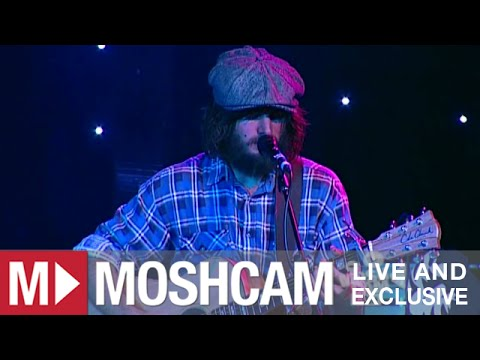 Angus & Julia Stone - The Devil's Tears   Live in Sydney   Moshcam