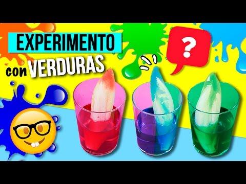 Increíble EXPERIMENTO con VERDURAS y COLORANTE para niños! ?  Top Tips & Tricks en 1 minuto