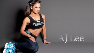 Major Update With AJ Lee Fake Nude Photo Controversy