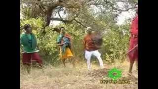 ቀረርቶና ፉከራ፡ የበላ ዘለቀን  አርበኝነት መሰረት ያደረገ- -Belay Zeleke-Ethiopian Patriot