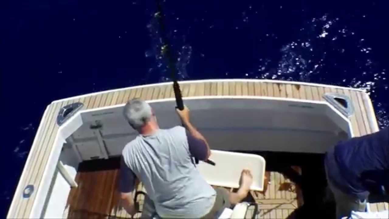Big Game Fishing   Geheimtipp Madeira