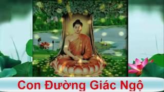 Con Đường Giác Ngộ - Truyện Phật Giáo ( Rất Hay )