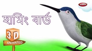 Humming Bird Rhyme in Bengali | বাংলা গান | Bengali Rhymes For Kids | 3D Bird Songs Bengali | Poems