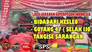 download lagu Samboyo Putro Lagu Jaranan Bidadari Keseleo - Goyang 47 gratis