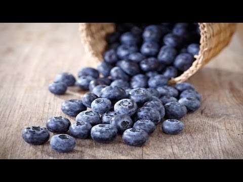 Blueberries For Brain Health - Nutritionist Karen Roth - San Diego