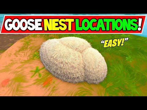 All Goose Nest Locations Fortnite Batte Royale Day 6 14 Days Of