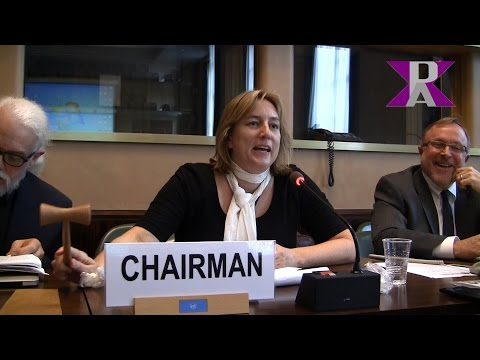 Mary Wareham - Human Rights Watch - Campaign to Stop Killer Robots - at CCW Meetings